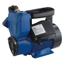 WELFLO WFSM60 Vortex Pump